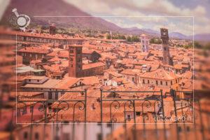 Gelatarium Lucca dettaglio foto su Lucca